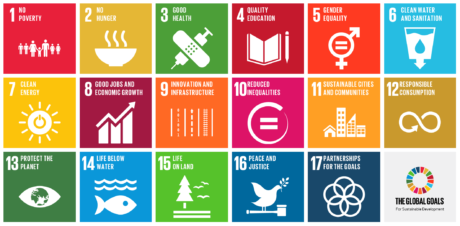 Relationship to the UN's global Sustainable Development Goals